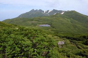 オッカバケ岳から見た二ツ池(北海道・知床)の写真素材 [FYI04732174]