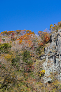 晩秋の袋田の滝・遊歩道の写真素材 [FYI04732267]