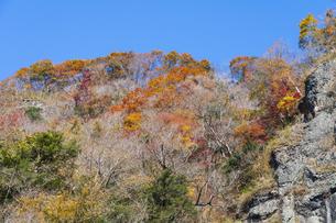 晩秋の袋田の滝・遊歩道の写真素材 [FYI04732268]