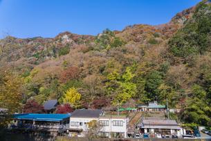 晩秋の袋田の滝・遊歩道の写真素材 [FYI04732271]