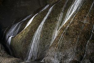 晩秋の袋田の滝・ライトアップの写真素材 [FYI04732282]