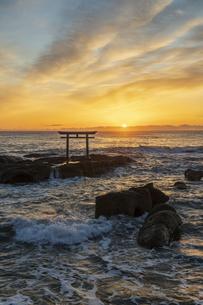 厳冬の海に明ける神磯の鳥居の写真素材 [FYI04732304]