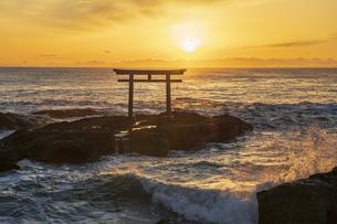 厳冬の海に明ける神磯の鳥居の写真素材 [FYI04732313]