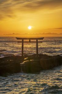 厳冬の海に明ける神磯の鳥居の写真素材 [FYI04732321]