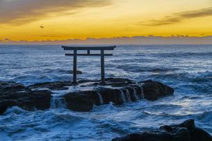 厳冬の海に明ける神磯の鳥居の写真素材 [FYI04732331]