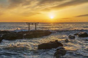 厳冬の海に明ける神磯の鳥居の写真素材 [FYI04732334]