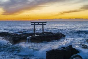 厳冬の海に明ける神磯の鳥居の写真素材 [FYI04732336]