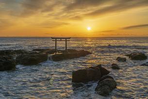 厳冬の海に明ける神磯の鳥居の写真素材 [FYI04732347]