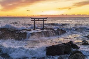 厳冬の海に明ける神磯の鳥居の写真素材 [FYI04732352]