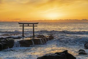 厳冬の海に明ける神磯の鳥居の写真素材 [FYI04732361]