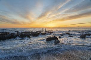 厳冬の海に明ける神磯の鳥居の写真素材 [FYI04732364]