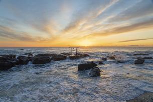 厳冬の海に明ける神磯の鳥居の写真素材 [FYI04732367]