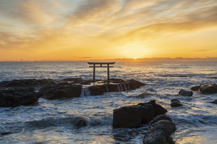 厳冬の海に明ける神磯の鳥居の写真素材 [FYI04732369]