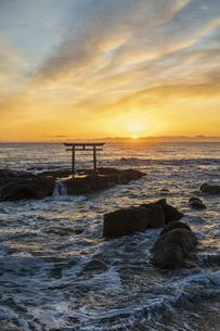 厳冬の海に明ける神磯の鳥居の写真素材 [FYI04732372]