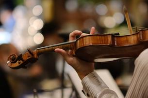 バイオリン奏者の写真素材 [FYI04732426]