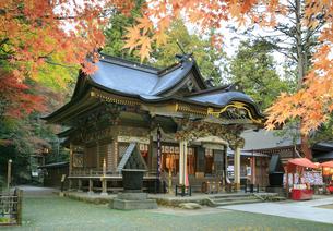 紅葉の宝登山神社の写真素材 [FYI04732443]
