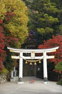 紅葉の宝登山神社の写真素材 [FYI04732450]
