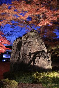 日本地質学発祥の地の石碑の写真素材 [FYI04732462]