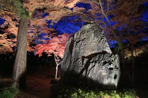 日本地質学発祥の地の石碑の写真素材 [FYI04732463]