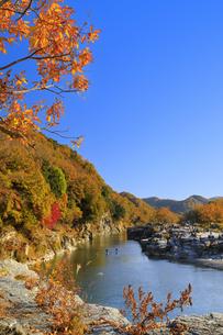 長瀞岩畳の紅葉の写真素材 [FYI04732467]