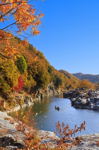 長瀞岩畳の紅葉の写真素材 [FYI04732468]