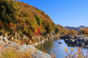 長瀞岩畳の紅葉の写真素材 [FYI04732471]