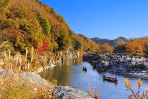長瀞岩畳の紅葉の写真素材 [FYI04732475]