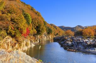 長瀞岩畳の紅葉の写真素材 [FYI04732476]