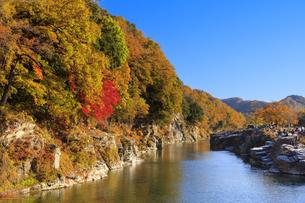 長瀞岩畳の紅葉の写真素材 [FYI04732478]