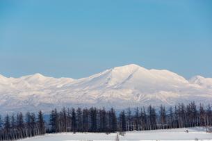 雪山の山頂と青空の写真素材 [FYI04732535]