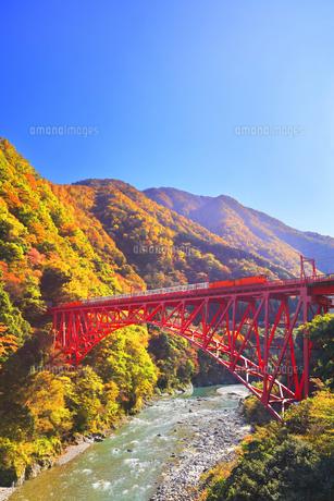 秋の黒部峡谷 トロッコ列車と紅葉の山並みに快晴の空の写真素材 [FYI04732570]
