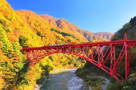 秋の黒部峡谷 トロッコ列車と紅葉の山並みに快晴の空の写真素材 [FYI04732572]