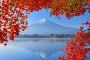 河口湖の紅葉と富士山の写真素材 [FYI04732963]