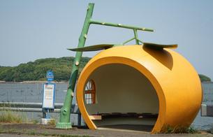 みかんのバス停の写真素材 [FYI04733171]
