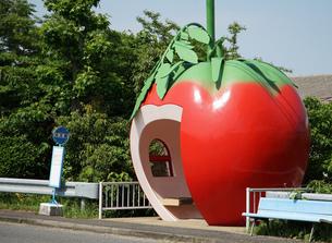 トマトの形のバス停の写真素材 [FYI04733172]