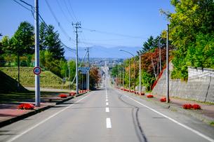 池田町の直線道路の写真素材 [FYI04733242]