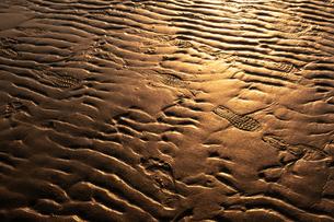 【香川県 三豊市】父母ヶ浜の夕暮れ の写真素材 [FYI04733335]