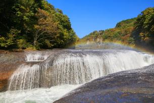 秋の吹割の滝の写真素材 [FYI04733374]