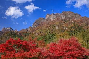 妙義山の紅葉の写真素材 [FYI04733379]