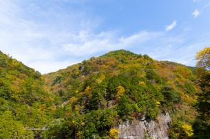 みたらい渓谷の紅葉の写真素材 [FYI04733624]