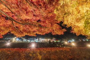 富士河口湖紅葉まつりライトアップの写真素材 [FYI04733919]