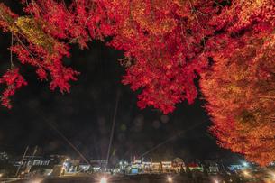 富士河口湖紅葉まつりライトアップの写真素材 [FYI04733920]