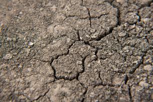 地割れの写真素材 [FYI04734044]