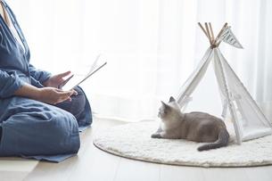 窓際でタブレット端末を見る女性と子猫の写真素材 [FYI04734186]