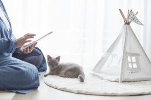 窓際でタブレット端末を見る女性と子猫の写真素材 [FYI04734478]