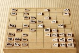 将棋の写真素材 [FYI04734556]