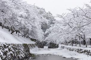 秋月城跡黒門の雪景色の写真素材 [FYI04734565]