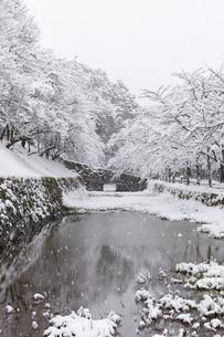 秋月城跡黒門の雪景色の写真素材 [FYI04734566]