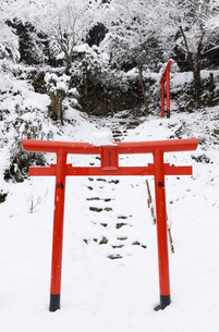 赤い鳥居と雪景色の写真素材 [FYI04734567]