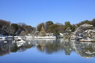 六義園の雪景色の写真素材 [FYI04734631]